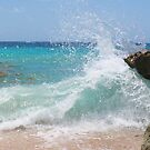 iphone-Bermuda Splash by Christine Wilson