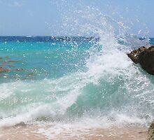 iphone-Bermuda Splash by Christine Wilson