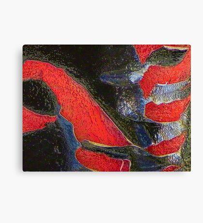 Destructive Forces Canvas Print