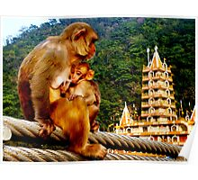 Monkey and baby on bridge over the holy river Ganga. Poster