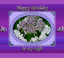 Wife Birthday Card - Lace Cap Hydrangea by MotherNature