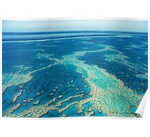 The Great Barrier Reef © Vicki Ferrari Poster