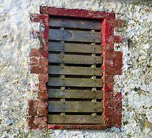 The Slatted Window by Fara