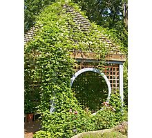 Garden Shed in Herb Garden Photographic Print