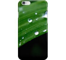 Dew drops on green grass iPhone Case/Skin