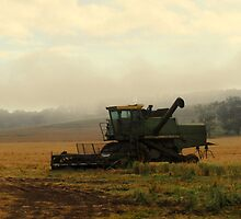 John Deere Header by Candice O'Neill