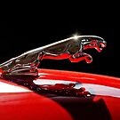 1961 Jaguar Kougar Hood Ornament by Jill Reger