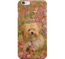 Where is Gizmo? - I Phone Case iPhone Case/Skin