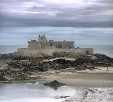 The St.Malo Island Castle  ( 1 ) by Larry Lingard-Davis