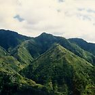 Mountains with Rice Terraces, Phillipines by Jane McDougall