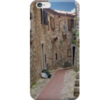 Stone Labyrinth iPhone Case/Skin
