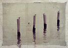 Four by Carol Knudsen