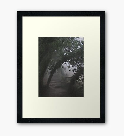 Mysterious Path Framed Print