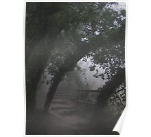 Mysterious Path Poster