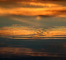 Golden Pond - Lauderdale Canal, Tasmania by clickedbynic