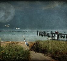 Moonlight dance by MarieG