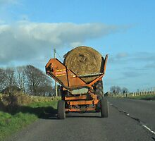 Hay Carting- Scottish style by sarnia2
