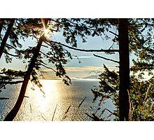 Shining on Golden Bay Photographic Print