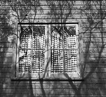 Shadowed Window by James2001