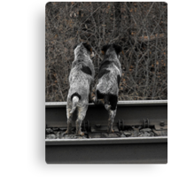 Want to check out the other side of the tracks? Canvas Print