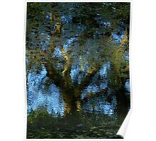Nature's Mirror ~ Part Three Poster