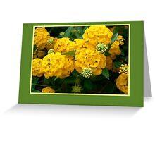 Yellow Hydrangea Greeting Card Greeting Card
