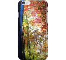 Fairy Tale Forest in the Fall iPhone Case/Skin
