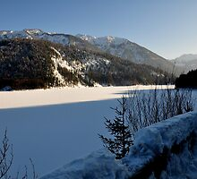 Germany, Frozen Lake by Daidalos