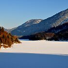 Germany, Frozen Lake 2 by Daidalos