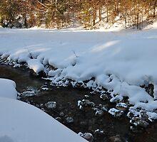 germany, winter brook 2 by Daidalos
