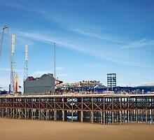 Blackpool Pier by Denise Wainwright