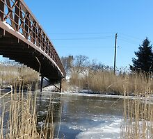 Bridge over fridged waters by Heather Crough