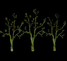 My Three Digital Trees by Sandra Foster