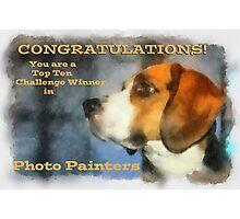 Banner Challenge Photo Painters Photographic Print