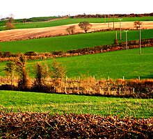 The Emerald Landscape by Fara