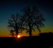 When the Sun Sets by michaelasamples