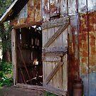 The Old Barn Door by Elizabeth Burton