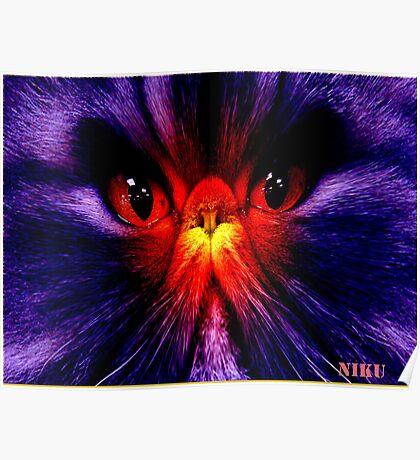 cat-shock·ing Poster