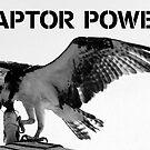 Raptor Power by David Lee Thompson