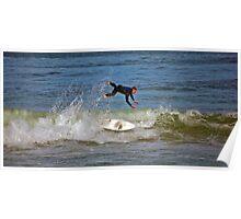 Flight of the Surfer Poster