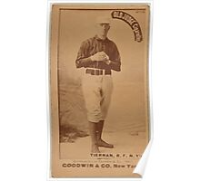 Benjamin K Edwards Collection Mike Tiernan New York Giants baseball card portrait Poster