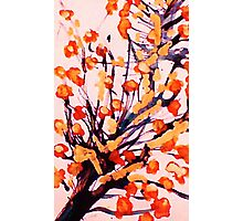 Cherry Blossoms, watercolor Photographic Print