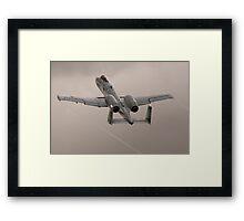 Warthog on the Rise Framed Print