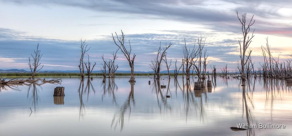 Lake Mokoan • Victoria • Australia by William Bullimore