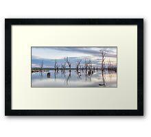 Lake Mokoan • Victoria • Australia Framed Print