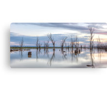 Lake Mokoan • Victoria • Australia Canvas Print