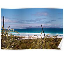 Cape Arid National Park Poster
