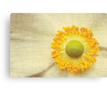A touch of yellow Canvas Print