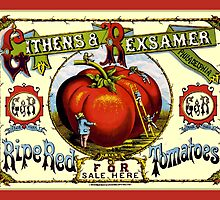 Ripe Red Tomatoes Vintage Advertisement by ukedward