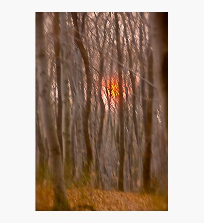 God  bless you ! My wonderful remembers  - Gesher Galicia . by Doktor Faustus. Photographic Print